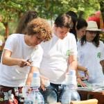 zilele parcului gheraiesti bacau 2014 (3)