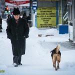 zapada iarna bacau 2014-13