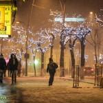 zapada iarna bacau 2014-6