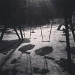parcul cancicov ceata iarna-10