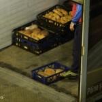 transport paine titan bucuresti (3)
