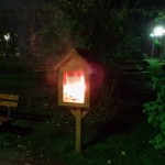 biblioteca strada incendiata bacau vandalizata 2